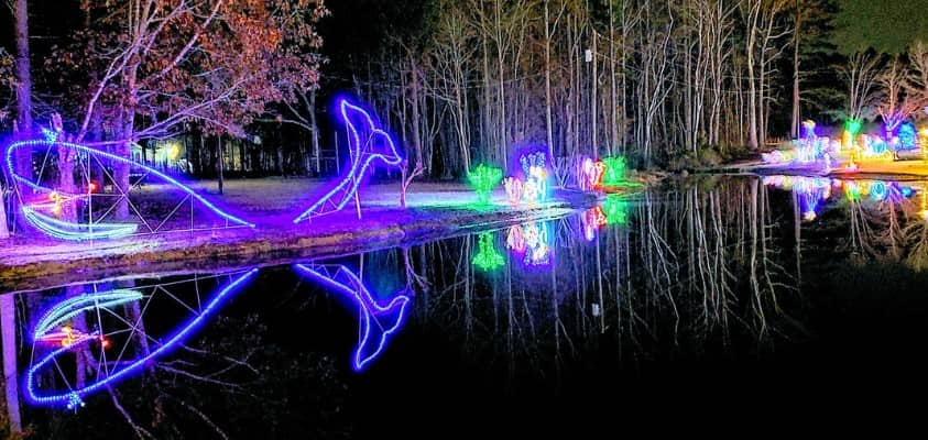 Whale by pond Christmas lights