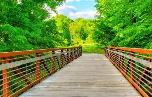 Neuse River Greenway Trail Biking