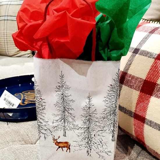 Bella Vita gift bag shop in downtown Raleigh NC